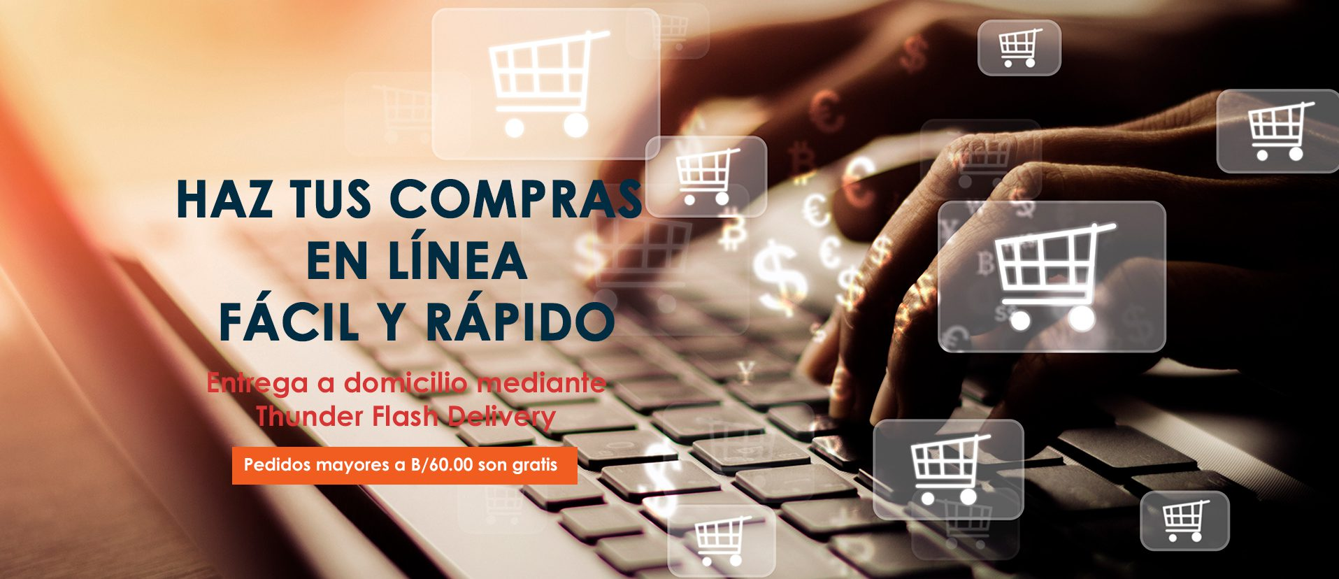 Haz tu compras en línea fácil y rápido
